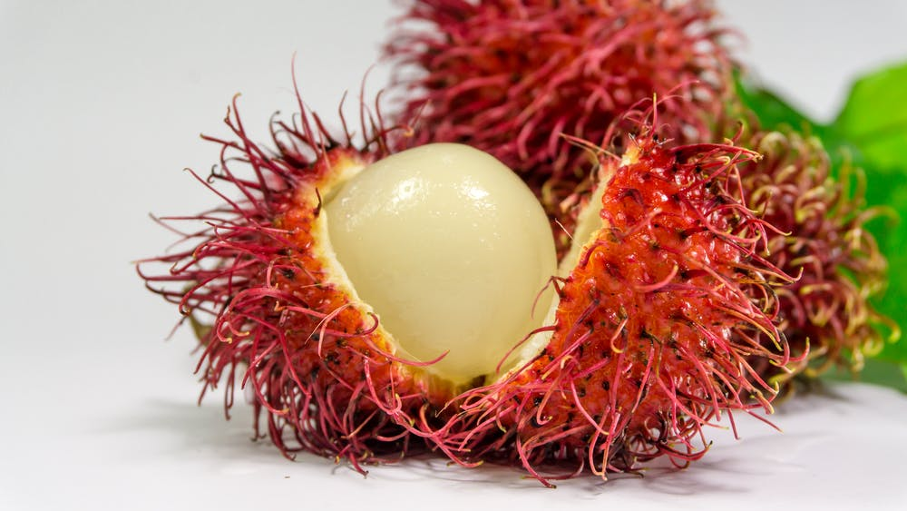 Rambutan Fruit Tree | Amazing Exotic Fruits You Didn't Know But Should