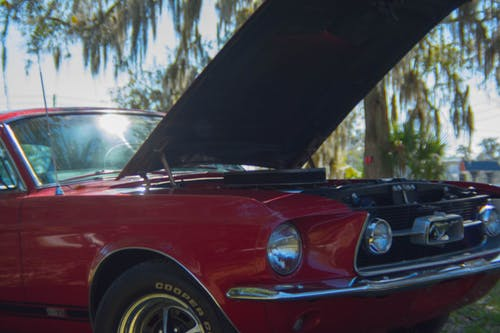 Free stock photo of car, mustang, red