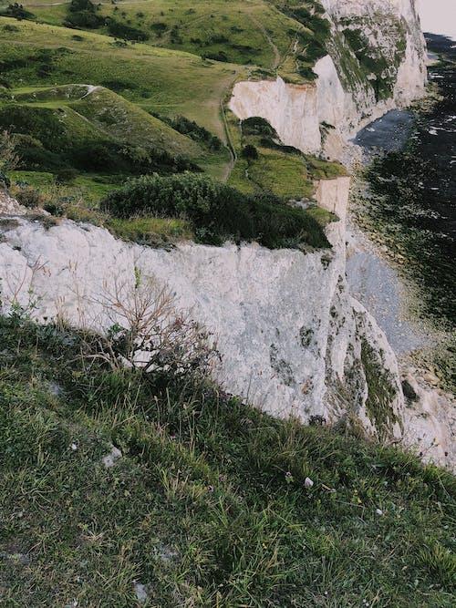 Darmowe zdjęcie z galerii z anglia, drzewo, góra, jezioro