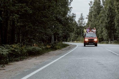 Brown Car on Road Between Trees