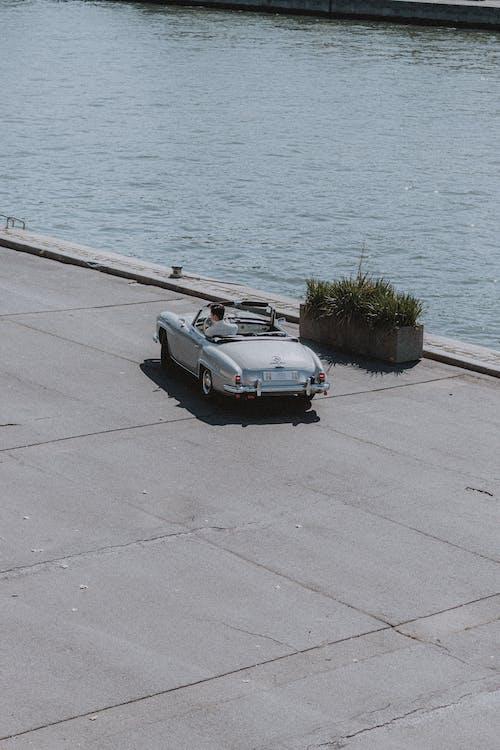 Ingyenes stockfotó autó, békés, beton, bokor témában