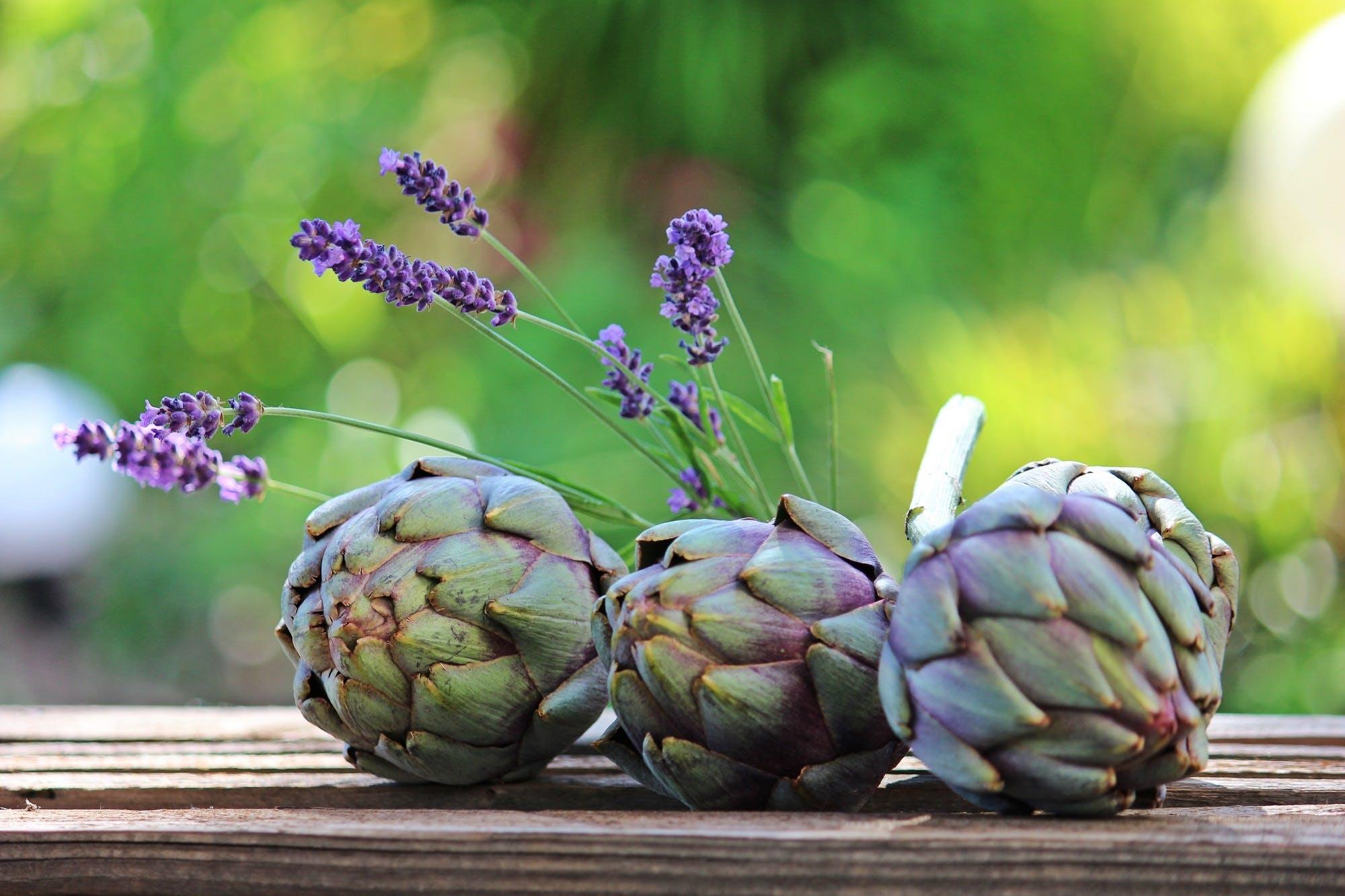 artichokes, blur, bokeh