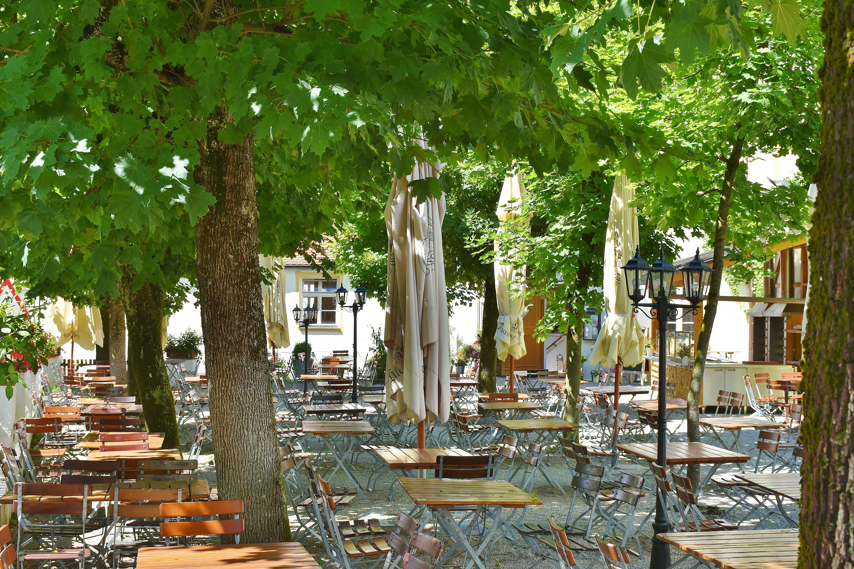 Free stock photo of restaurant, summer, garden, drink