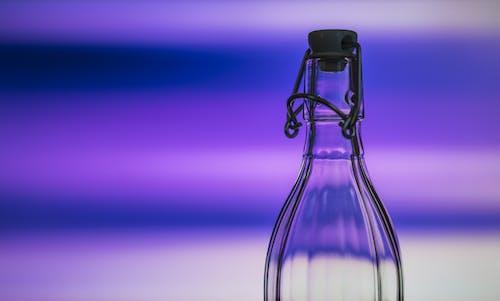Ingyenes stockfotó ibolya, kék, közelkép, lila témában