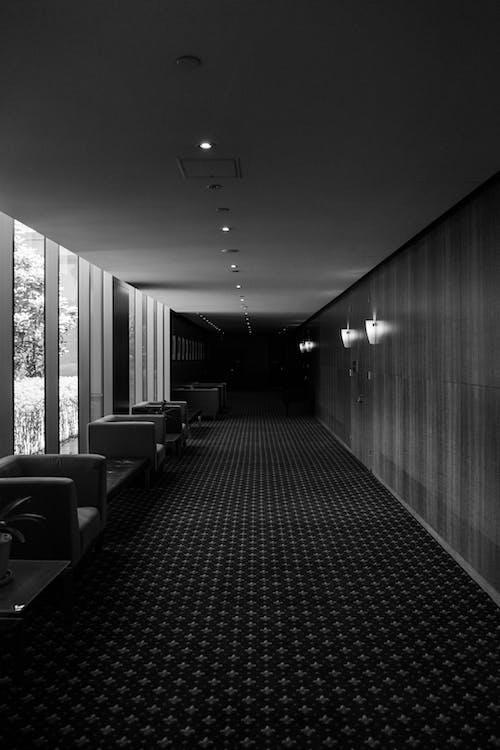 ホテルブリルハンテ, 地毯, 對比 的 免費圖庫相片