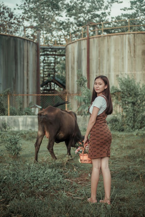 Young woman grazing bull in village