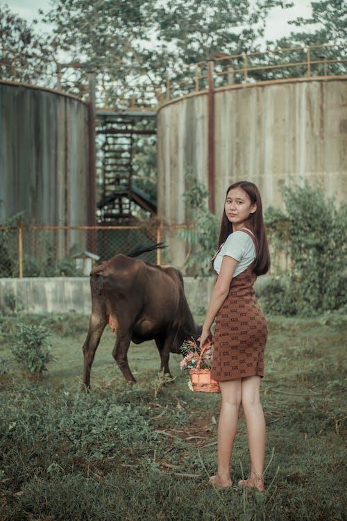 Foto stok gratis agrikultura, anak, cewek, dewasa