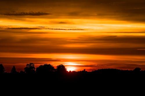 Fotos de stock gratuitas de amanecer, arboles, cielo, cielo al atardecer