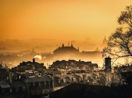 Foto d'estoc gratuïta de alba, amb boira, arquitectura, boira