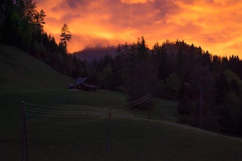 Бесплатное стоковое фото с бельевая веревка, вечер, гора, дерево