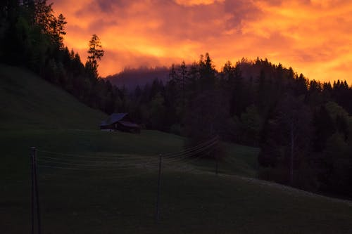 Fotos de stock gratuitas de amanecer, arboles, cielo, colina