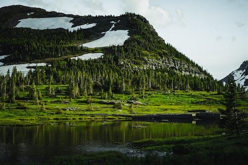 Бесплатное стоковое фото с ан lichtbak toevoegen 로간, вечнозеленый, вода, гора