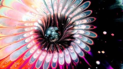 Purple and Black Flower Illustration