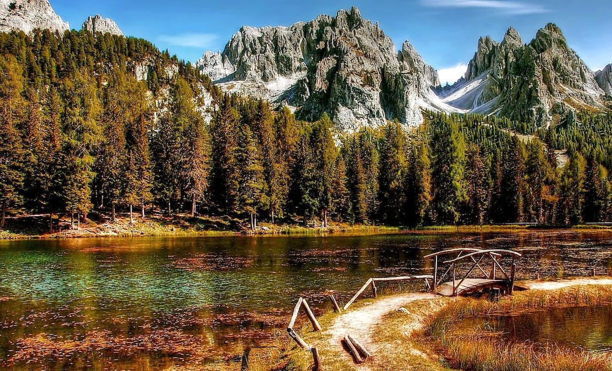 bjerg, bjergvandring, dagslys