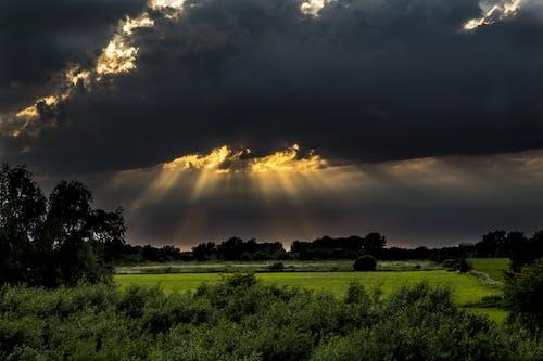 Photos gratuites de arbres, ciel, clairière, exploitation agricole