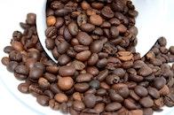 caffeine, coffee, close-up