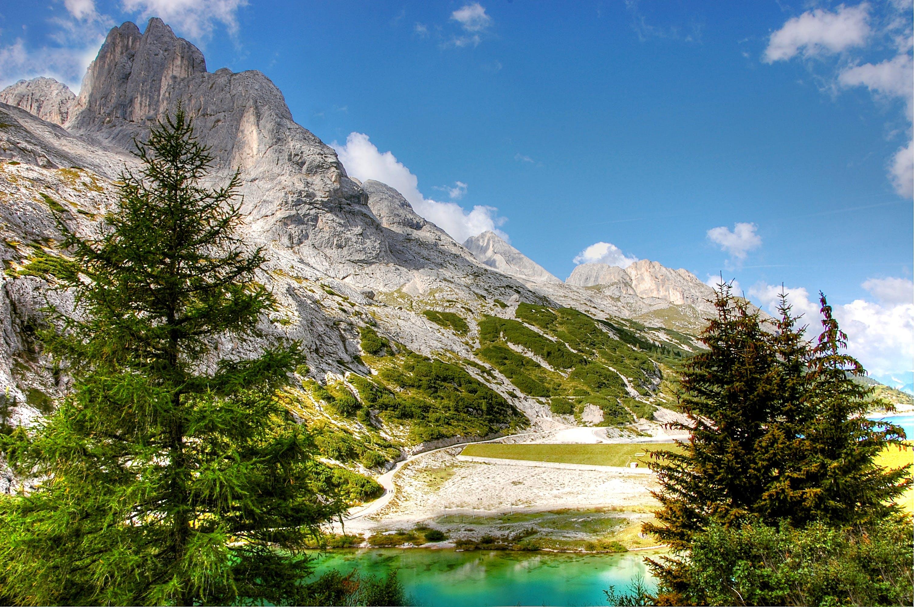 Kostenloses Stock Foto zu alpin, bäume, berge, bergwandern
