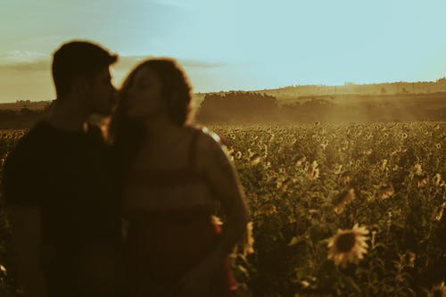 Anonymous couple in blooming field