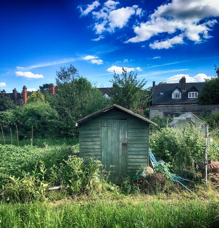 αγροικία, αγρόκτημα, γρασίδι