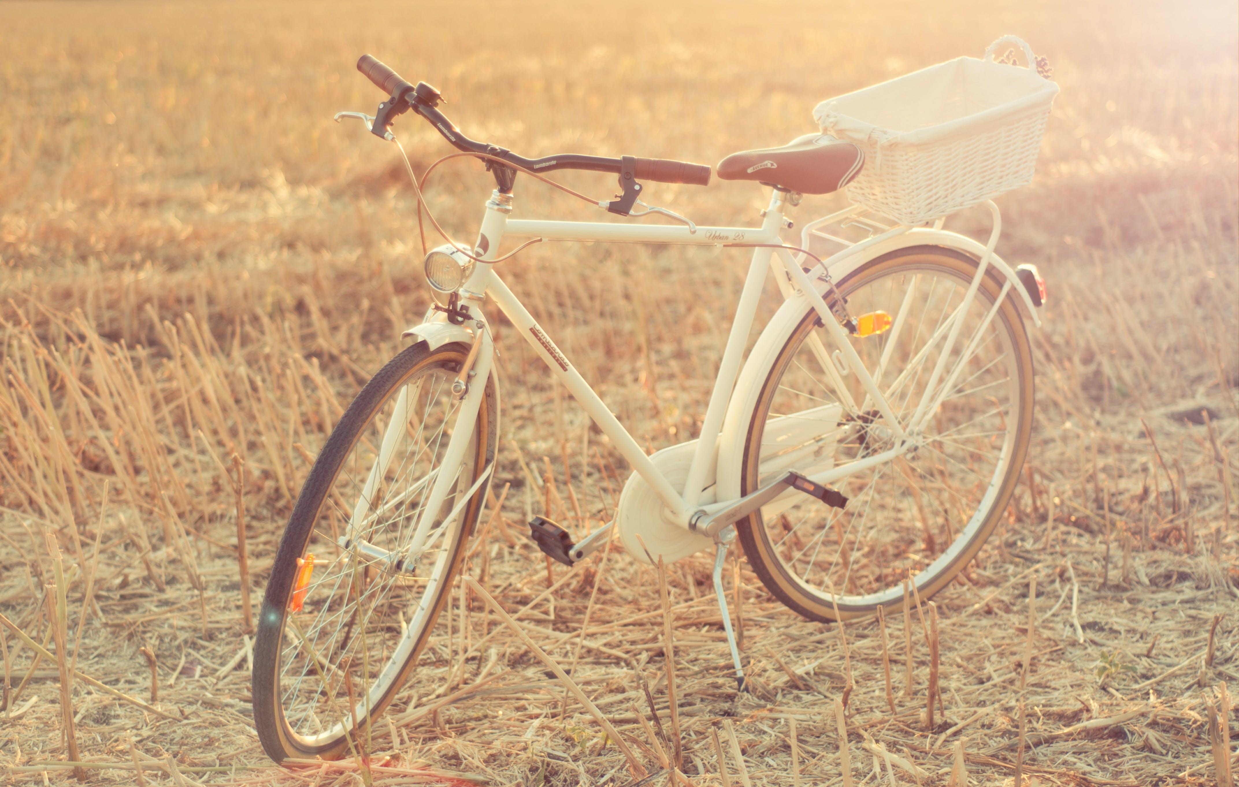White City Bike on Wheat Field
