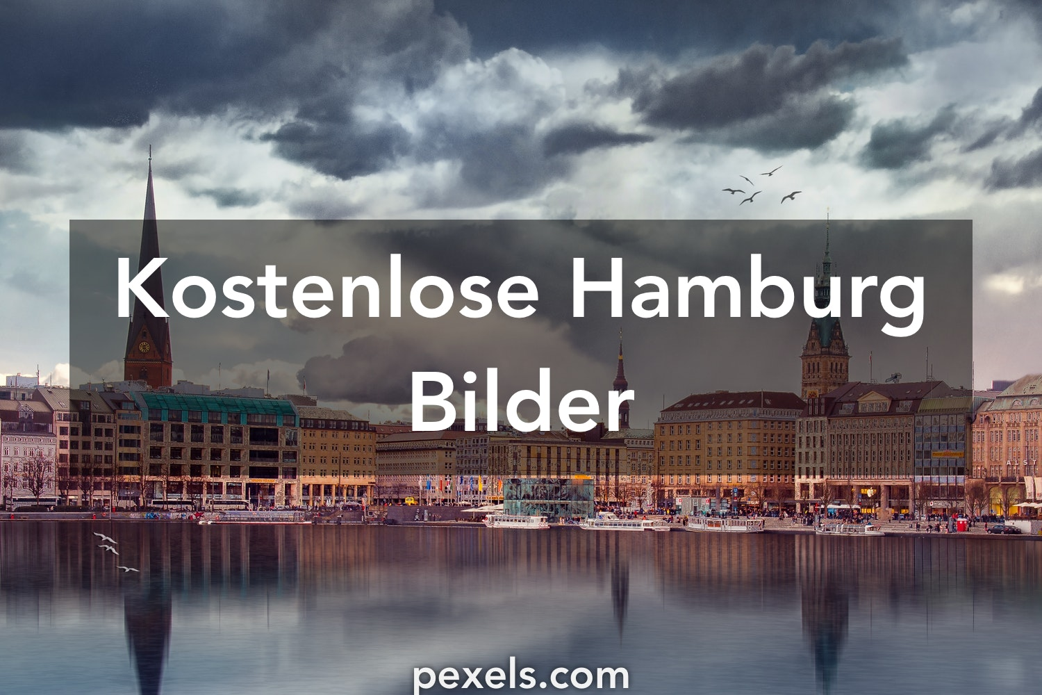 10 hamburg fotos pexels kostenlose stock fotos. Black Bedroom Furniture Sets. Home Design Ideas