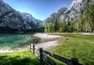 landscape, water, trees