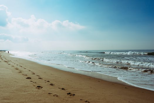 Free stock photo of sea, beach, footprint, steps
