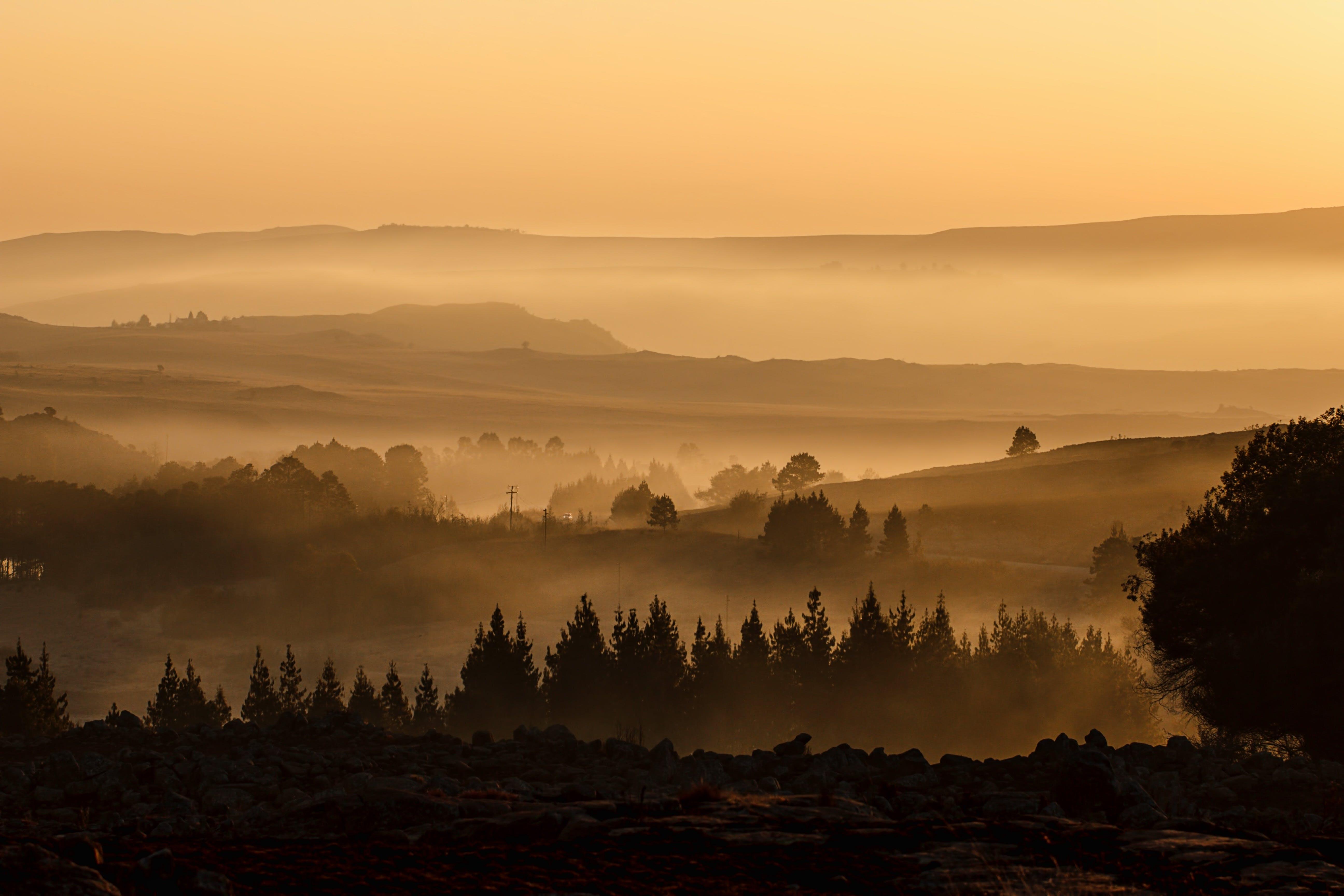 Darmowe zdjęcie z galerii z dolina, drewno, drzewa, krajobraz