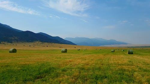 Δωρεάν στοκ φωτογραφιών με Montana, βουνά, γαλάζιος ουρανός, μπάλες