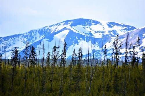 Immagine gratuita di azzurro, innevato, montagne
