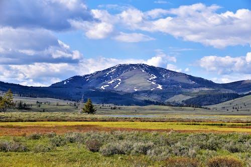 Ingyenes stockfotó domb, ég, farm, festői témában
