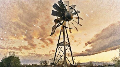 Immagine gratuita di dorato, mulino a vento, tramonto