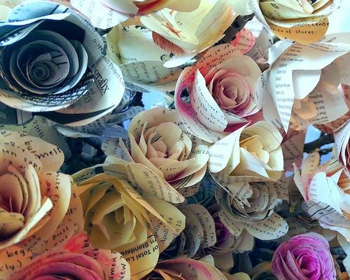 Základová fotografie zdarma na téma barevný, kutilství, květiny, papírové květiny
