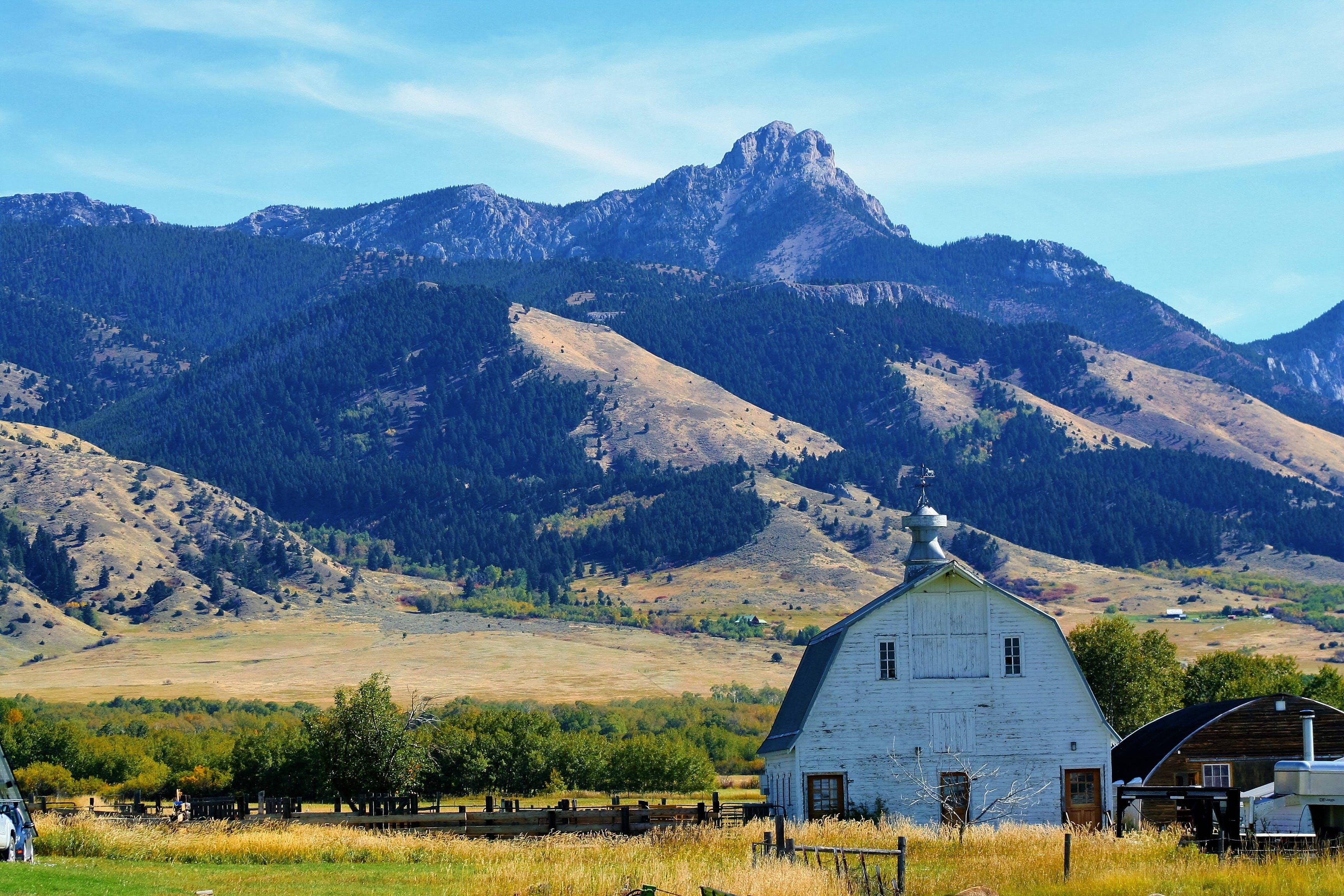 barn, country, countryside