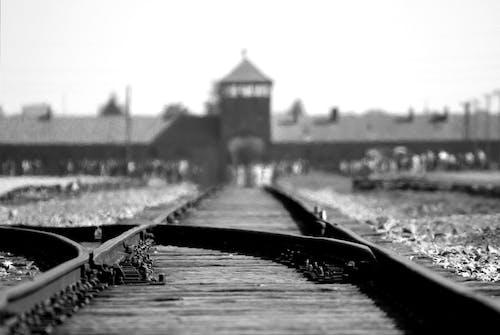 Gratis arkivbilde med auschwitz, birkenau, dybdeskarphet, holocaust
