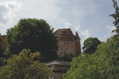 Бесплатное стоковое фото с архитектура, готический, деревья, дневной свет