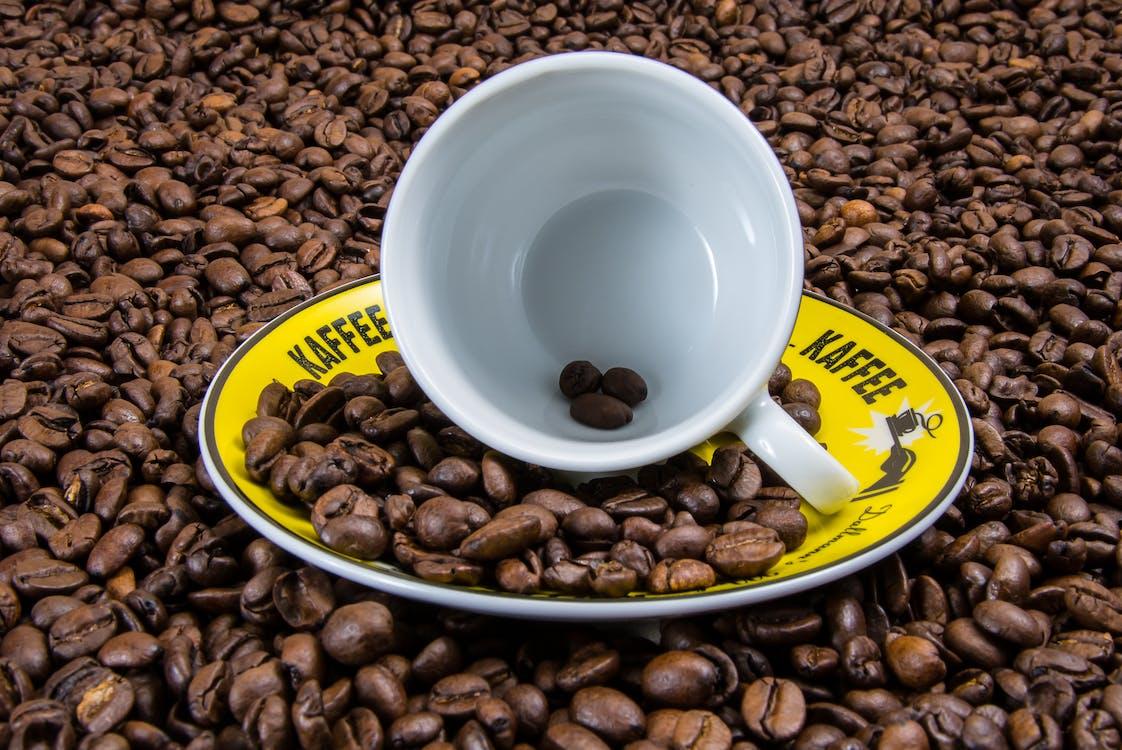 aroma, café, cafeína
