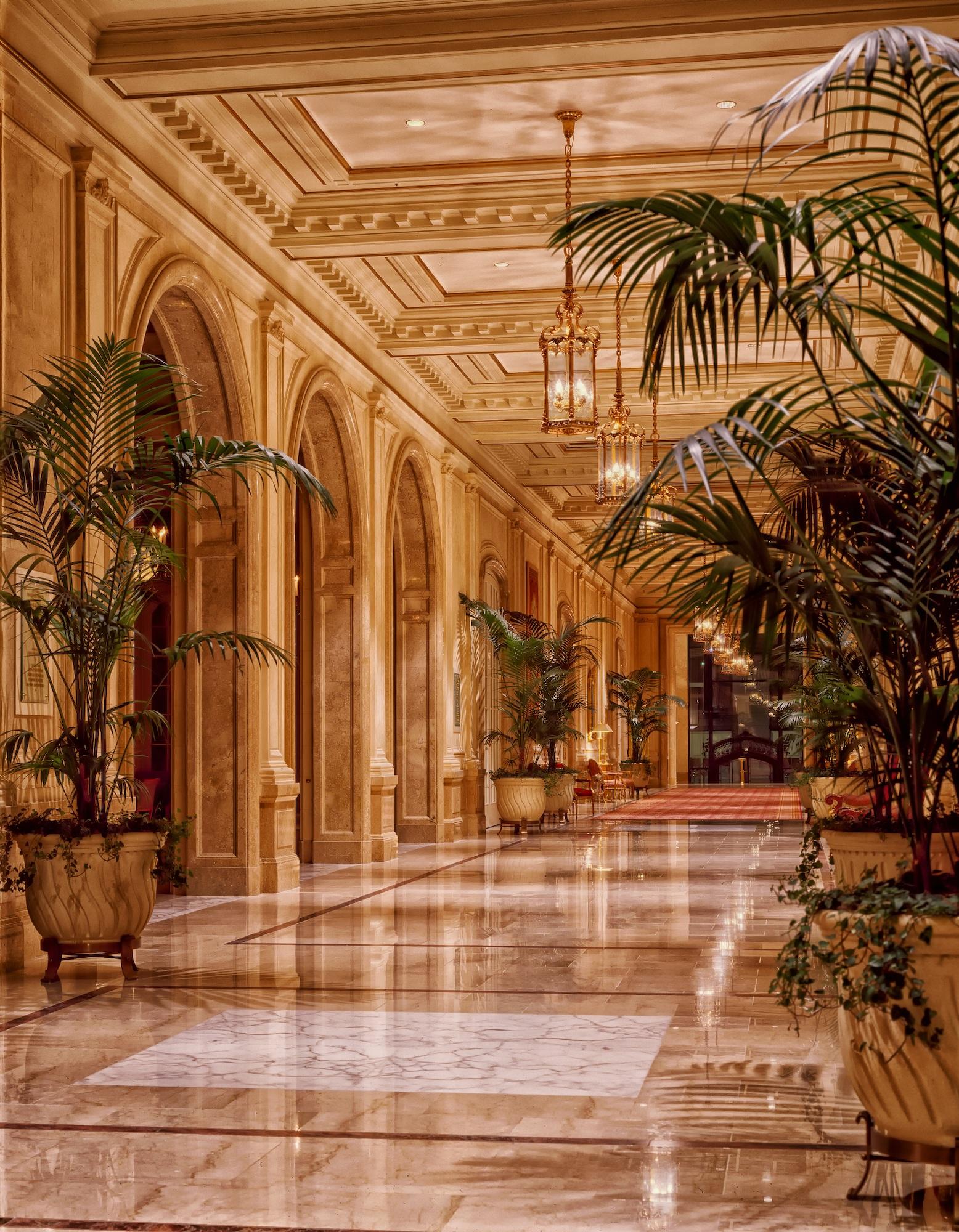 Free stock photo of lights, architecture, plants, lighting
