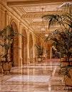lights, architecture, plants