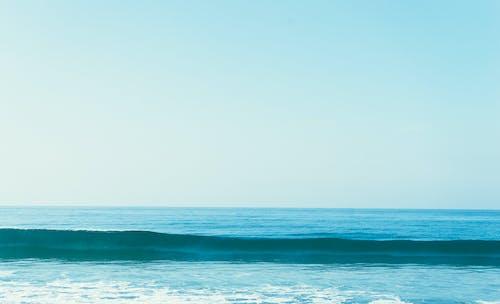 Základová fotografie zdarma na téma mávat, moře, oceán, příroda