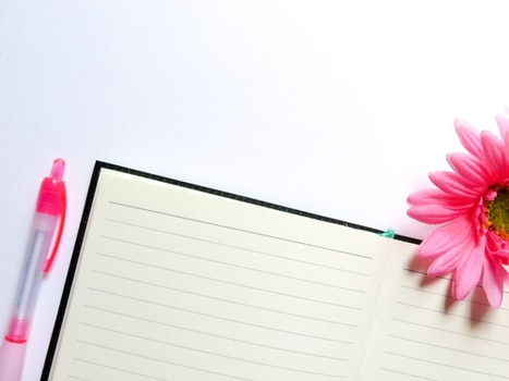 Free stock photo of notebook, pen, lines, flower