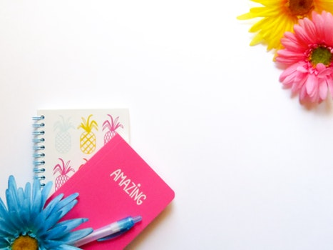 Free stock photo of flowers, blue, pen, yellow
