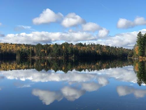 Ilmainen kuvapankkikuva tunnisteilla boreaalinen metsä, heijastukset, järvi