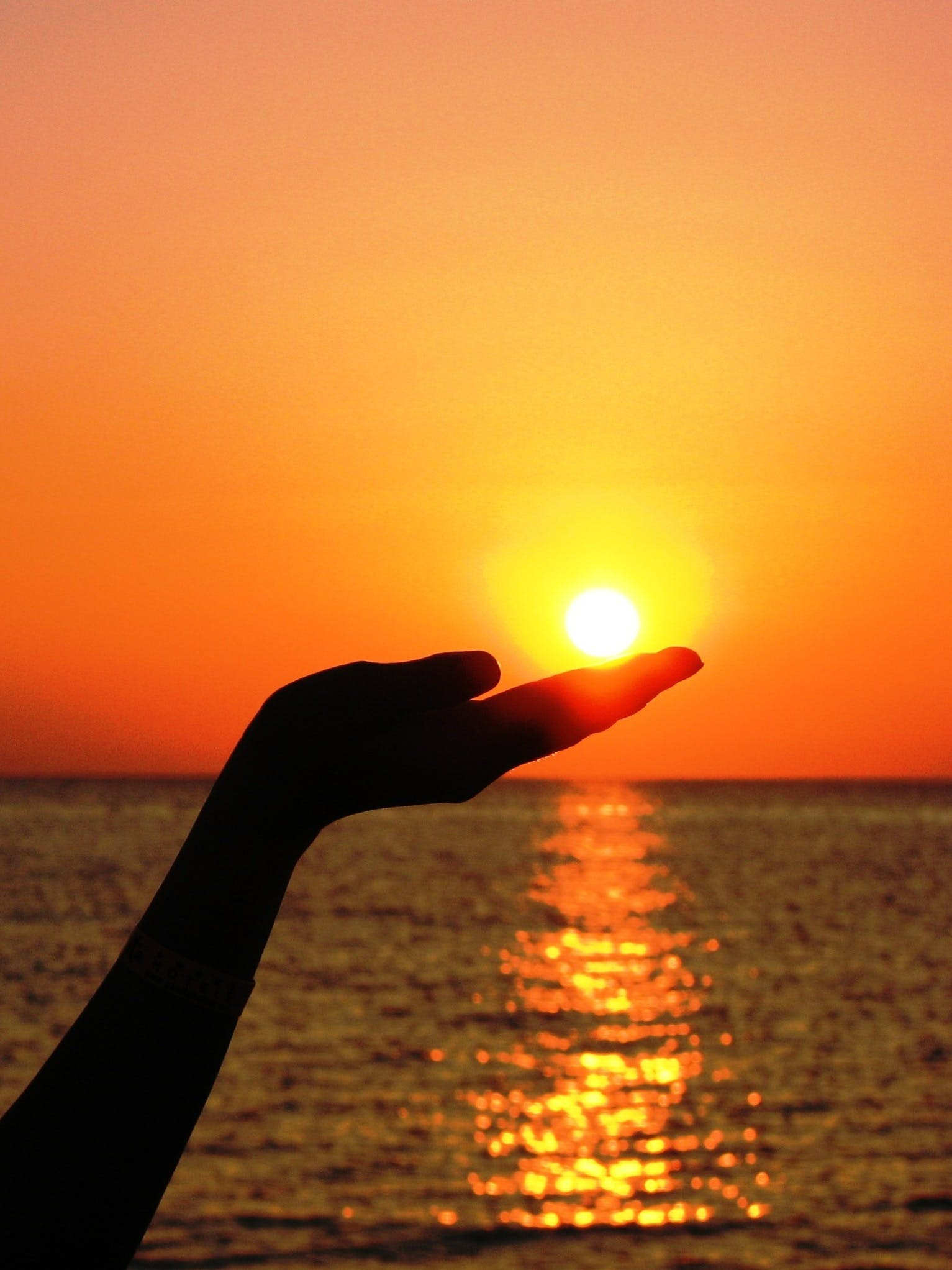 Silhouette of Human Hand Holding the Sun Set Near Ocean Photography