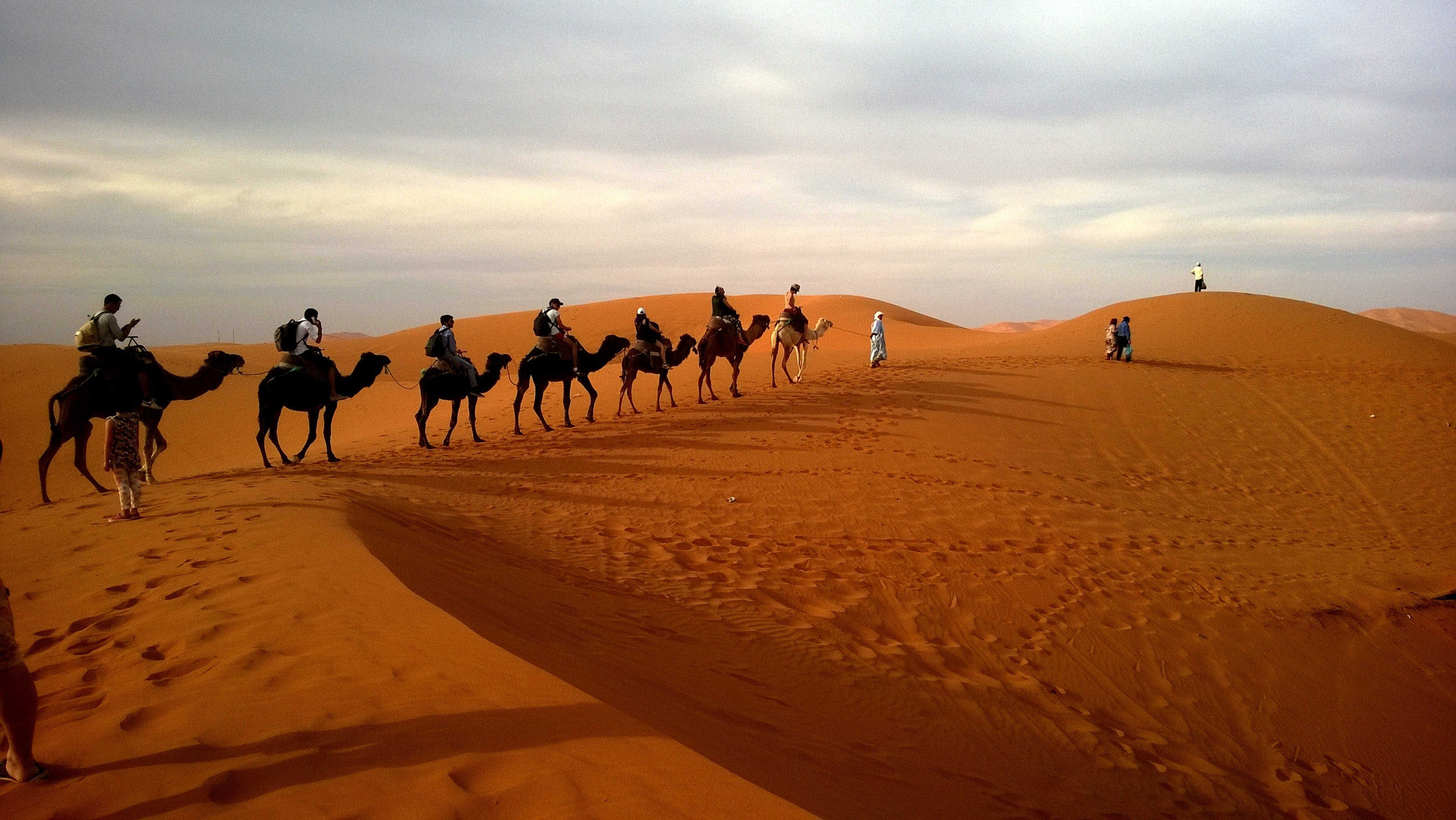 Human Riding Camel on Dessert Under White Sky during Daytime
