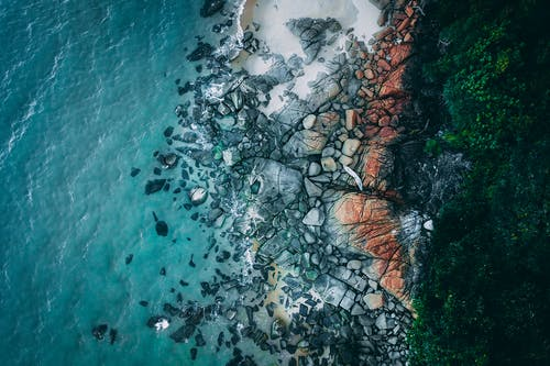 Aerial view of turquoise seawater washing stony coast covered with lush greenery on clear day