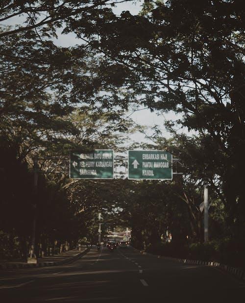 Gratis arkivbilde med arkitektur, daggry, falle, gate