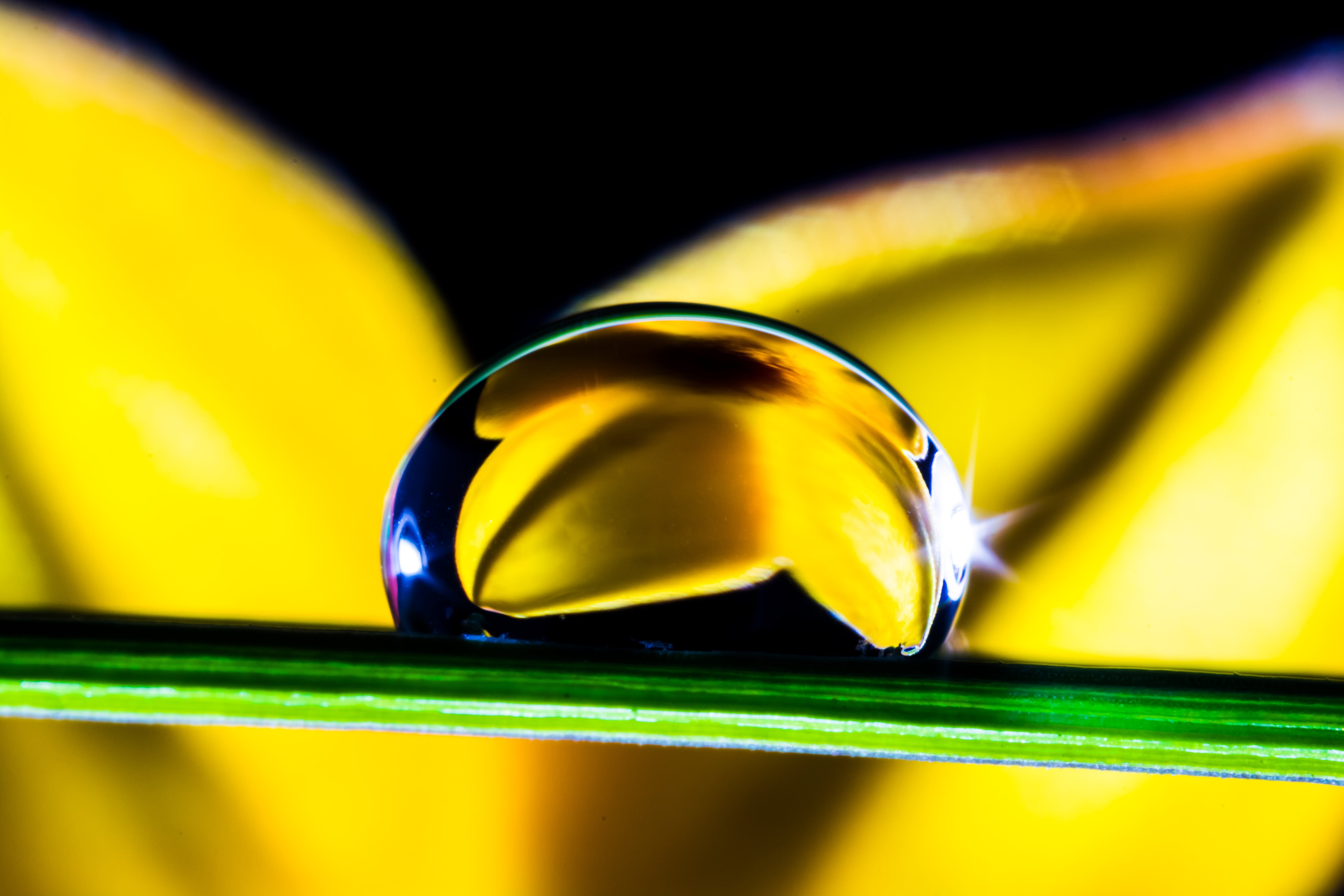 Water Drop in Green Leaf