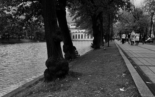Black and white of unrecognizable pedestrians walking along alley in Chistoprudny Boulevard near Clean Ponds in Moscow