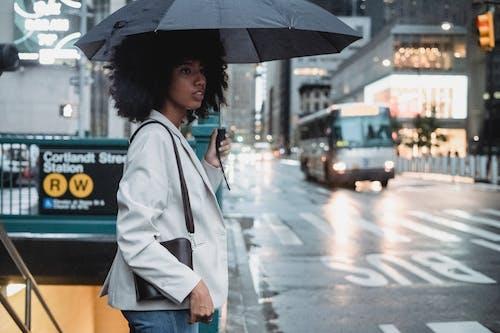 人, 咖啡, 商業 的 免費圖庫相片